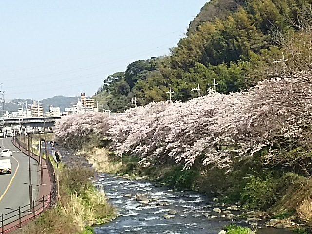 小松石墓石 記念碑2017041602