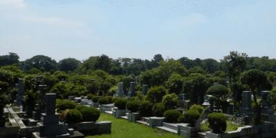 小平霊園 墓石 本小松石