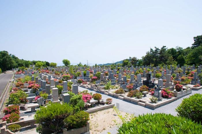 本小松石墓石 鵯越墓園21