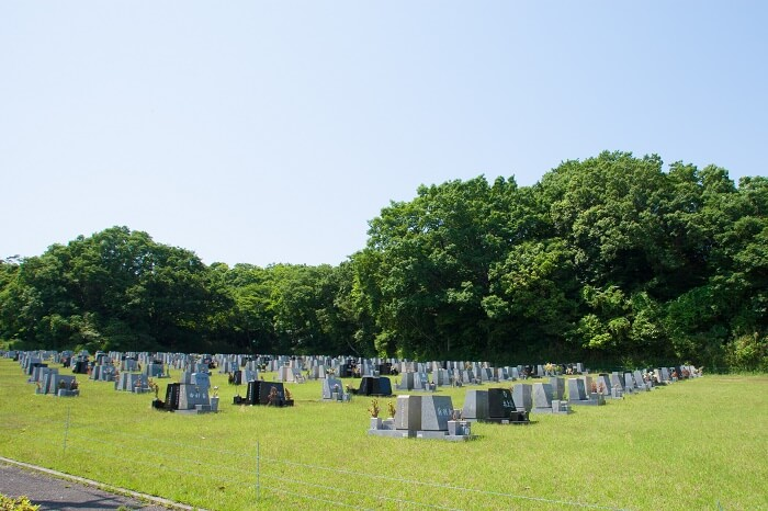 本小松石墓石 鵯越墓園22