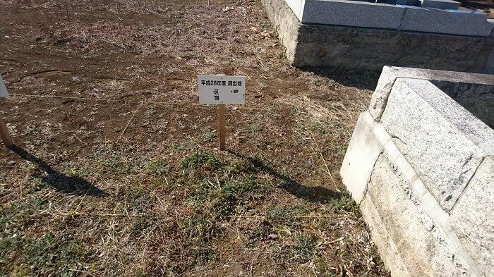 多磨霊園 国産墓石 本小松石 1